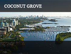 Coconut Grove